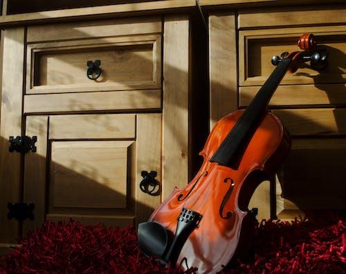 Gratis arkivbilde med akustisk, design, fiol, fiolin