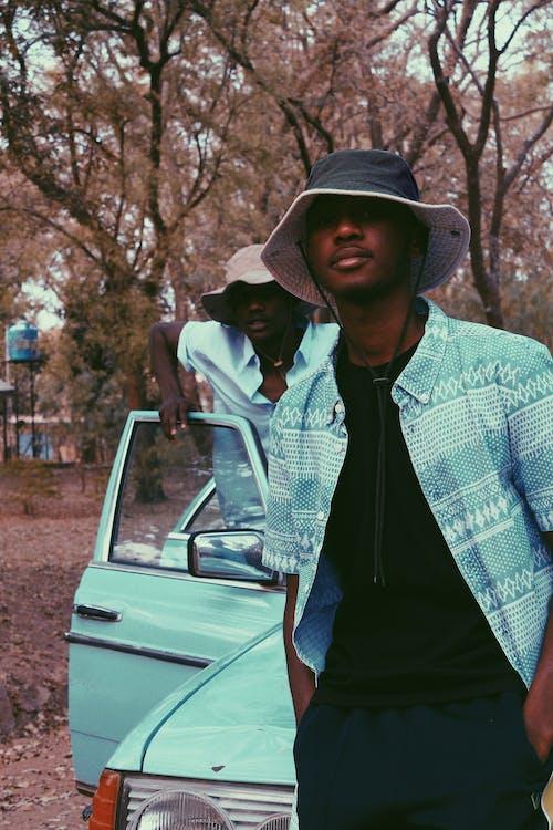 Imagine de stoc gratuită din afro-americani, arbore, asemănător, auto