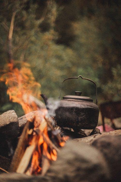Kostenloses Stock Foto zu asche, brennen, brennholz
