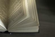 macro, book, novel