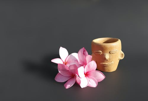 Pink Flowers Beside A Clay Pot