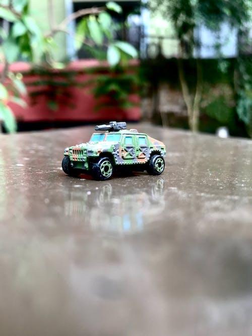 Free stock photo of dark green, fun, fun activity, funny