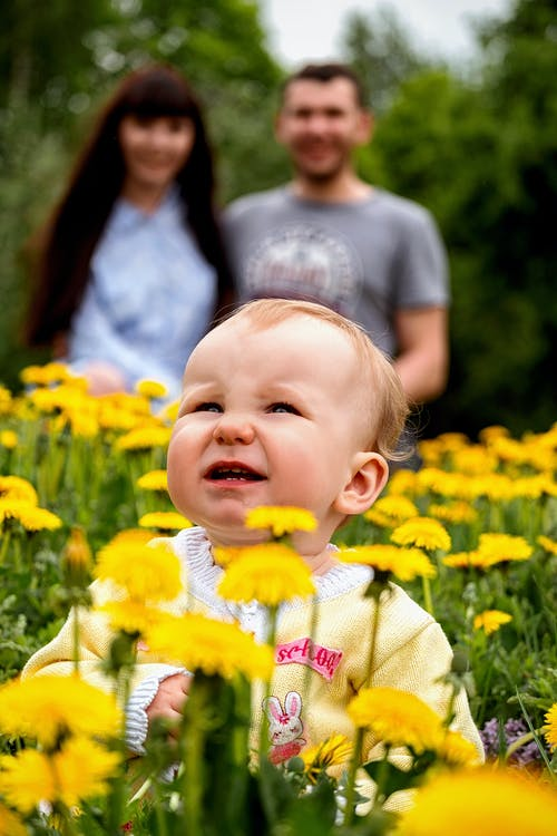 Cheerful young parents with cute little girl in meadow