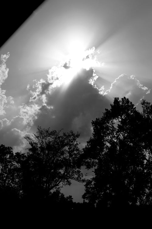 Free stock photo of black and white, clouds, cloudy