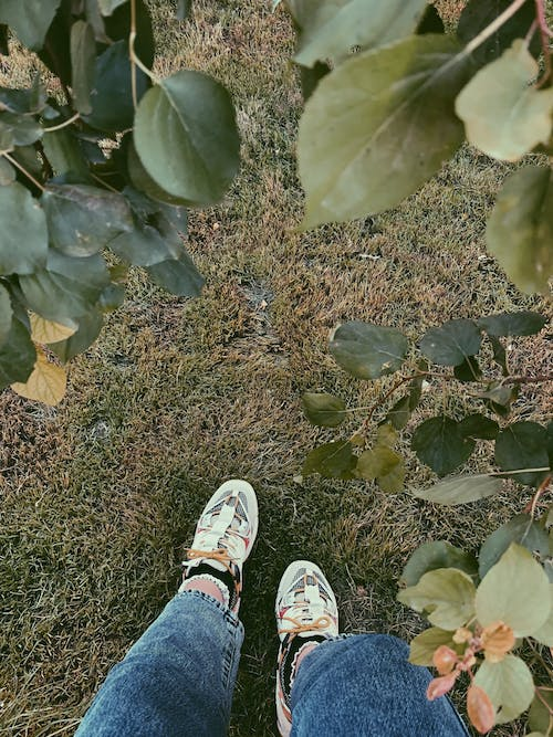 Person in Blue Denim Jeans and White Sneakers Standing on Green Grass Field