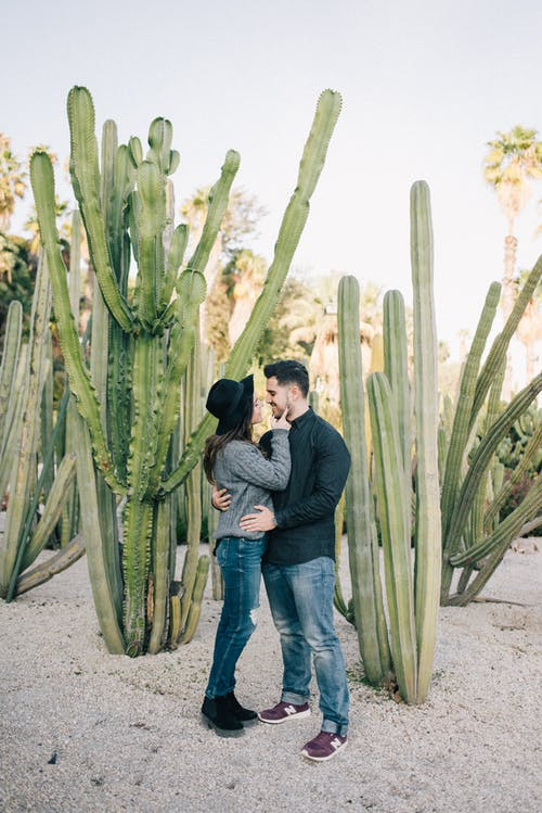 Man and Woman Holding Each Other Near Green Cactus Plants