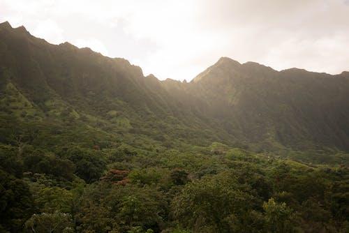 açık hava, bakir bölge, barışçıl içeren Ücretsiz stok fotoğraf