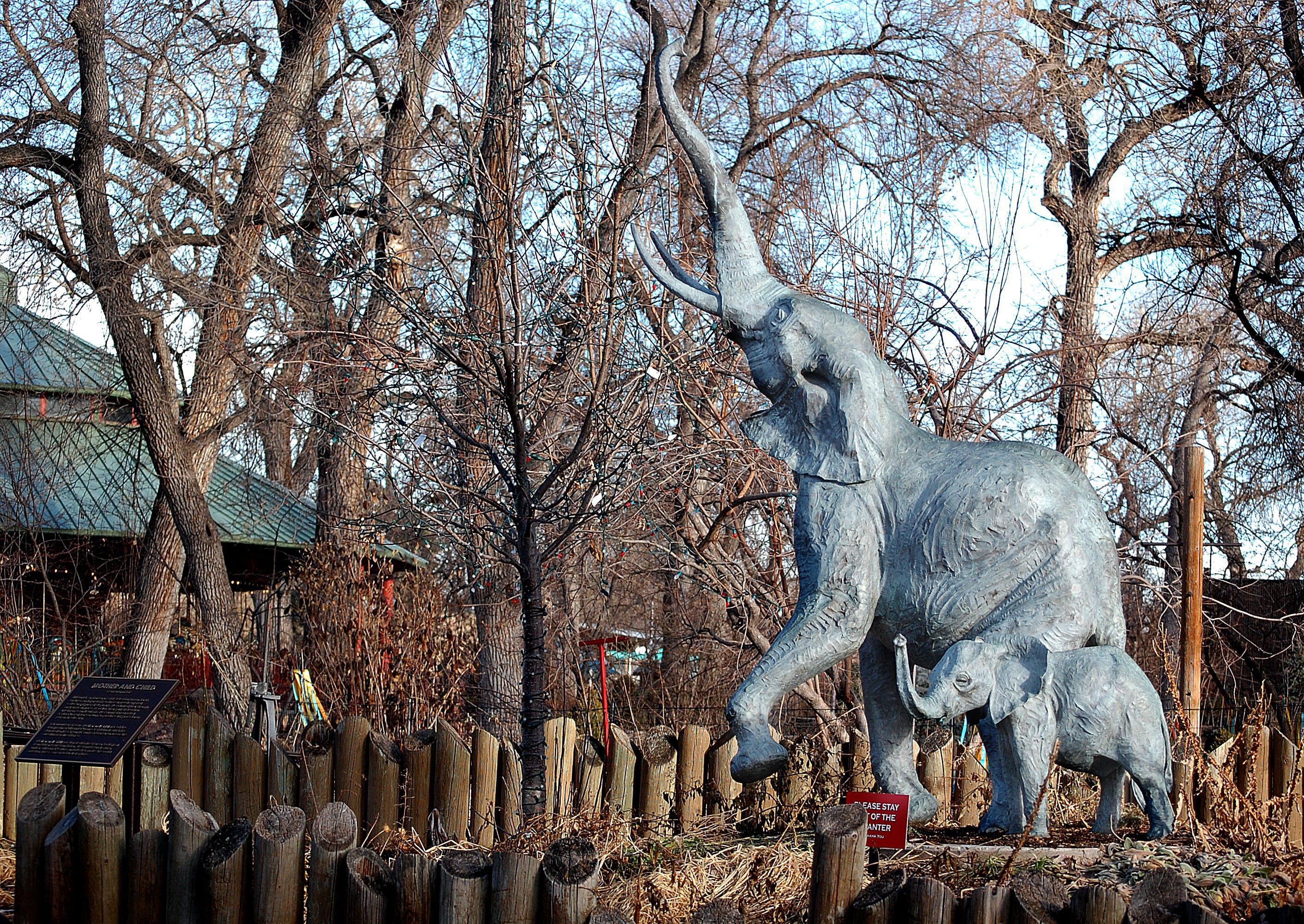 Free stock photo of Denver, zoo