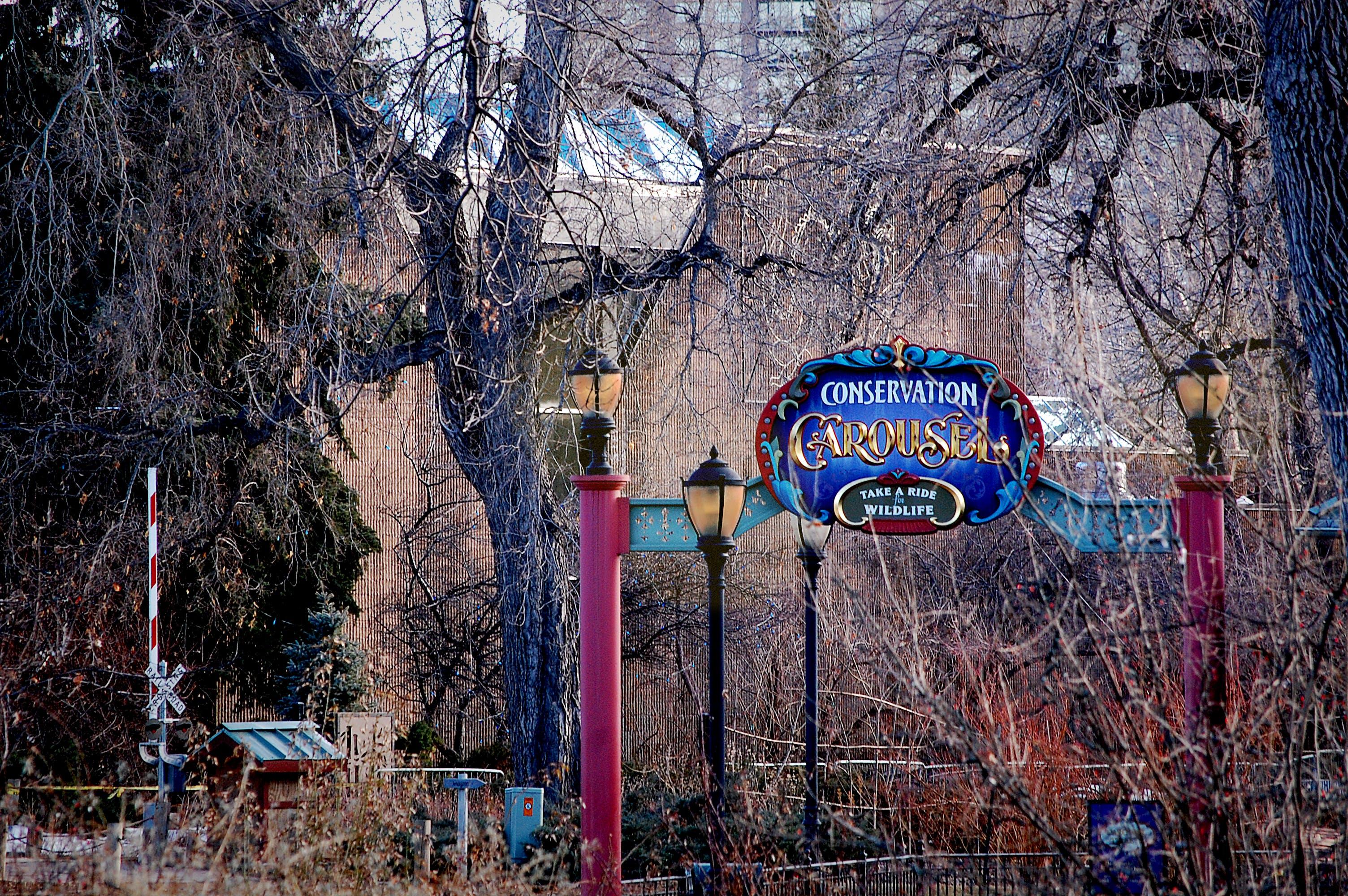 Free stock photo of creepy, Denver, spooky, zoo