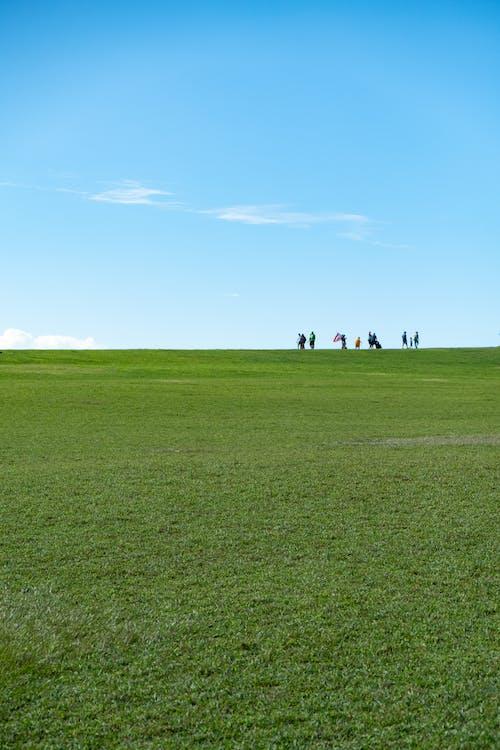 People Walking on Green Grass Field Under Blue Sky