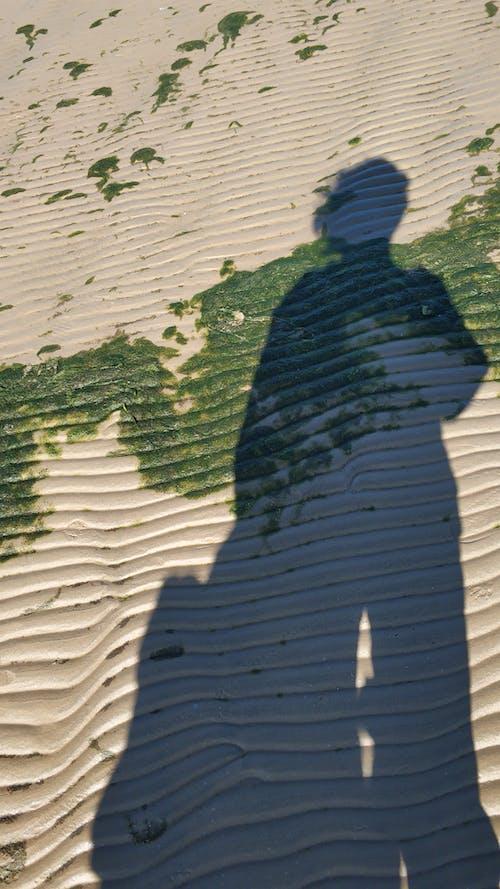 Kostenloses Stock Foto zu allein, anonym, anonymous, ausflug