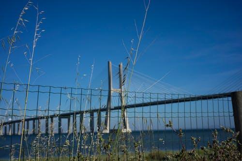 Free stock photo of bridge, landscape, nature