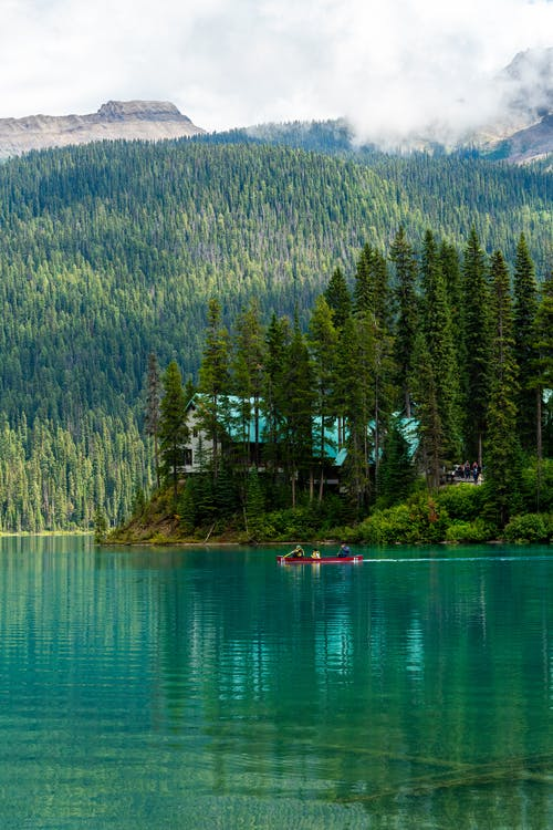 Free stock photo of adventure, blue water, canoe, canoeing