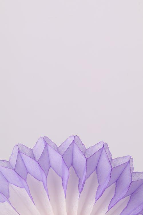 Ilmainen kuvapankkikuva tunnisteilla abstrakti, asetelma, erilainen, hauras
