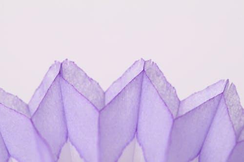 Ilmainen kuvapankkikuva tunnisteilla paperi, värikäs peacock hunajakenno pöydän koristelu