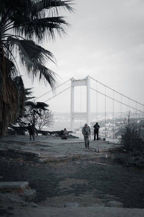Unrecognizable photographers taking picture of bridge from viewpoint