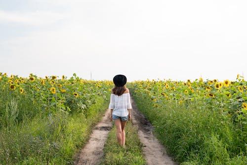 Woman in White Shirt Walking on Pathway Between Yellow Flower Field