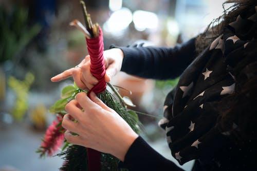Crop florist tying ribbon on bunch of plants