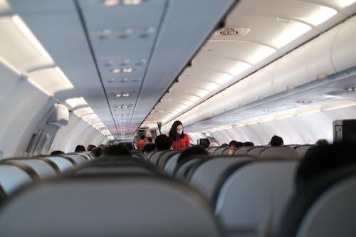 Fotos de stock gratuitas de adentro, aerobús, aerolínea, aeronave