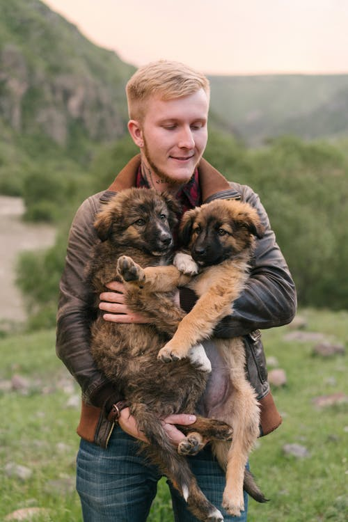 Man in Brown Leather Jacket Carrying Brown and Black Dogs