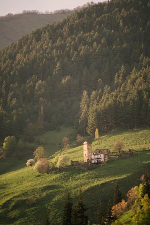 Brown House on Green Grass Field Near Mountain