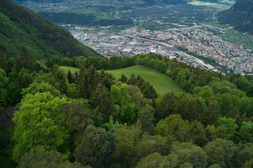 Immagine gratuita di alto adige, bolzano, città, colle