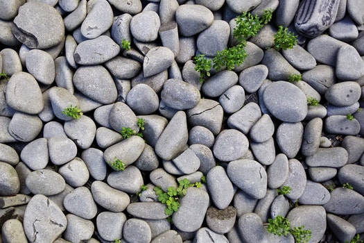 Gray Pebbles With Green Grass