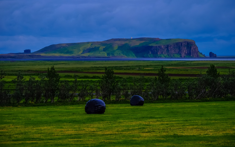 Foto d'estoc gratuïta de aigua, camp, cel, herba