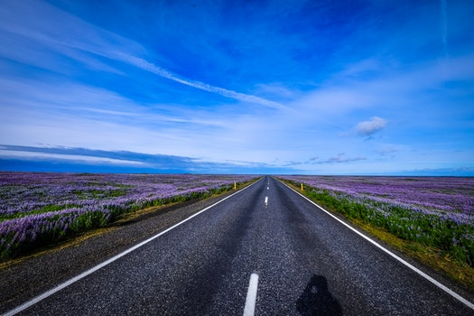 Free stock photo of road, landscape, nature, clouds
