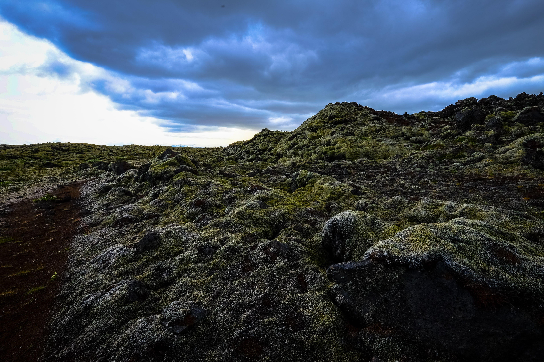 Mossy Rocky Mountain Terrain