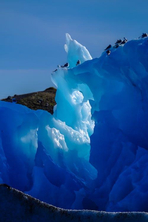 Foto profissional grátis de céu, com frio, congelado, geada
