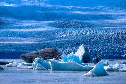 Free stock photo of cold, iceberg, melting, snow