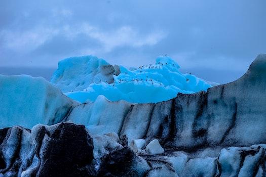 Free stock photo of cold, glacier, melting, landscape