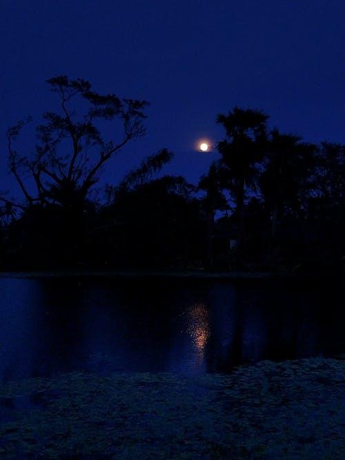 Ảnh lưu trữ miễn phí về bầu trời đêm, mặt trăng, trăng tròn