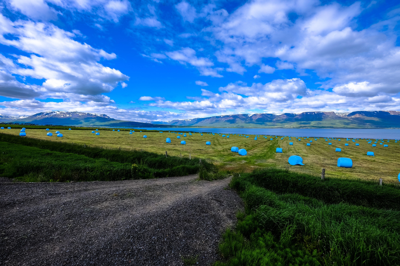 Immagine gratuita di acqua, ambiente, campo, cielo