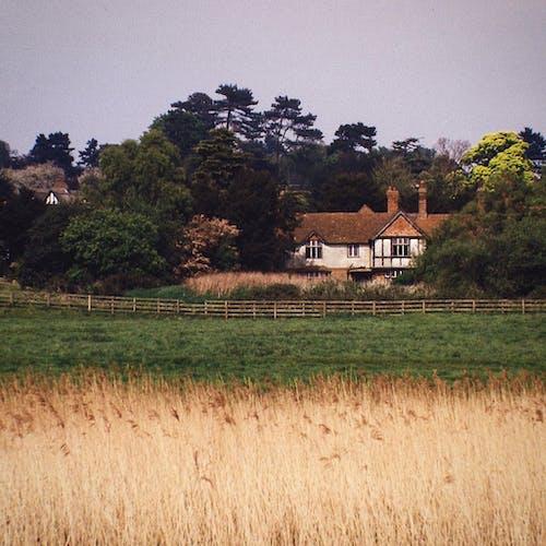 Foto d'estoc gratuïta de a pagès, camp, casa abandonada, casa antiga