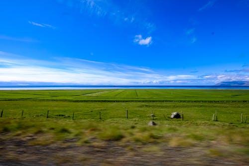 Бесплатное стоковое фото с газон, горизонт, живописный, идиллический