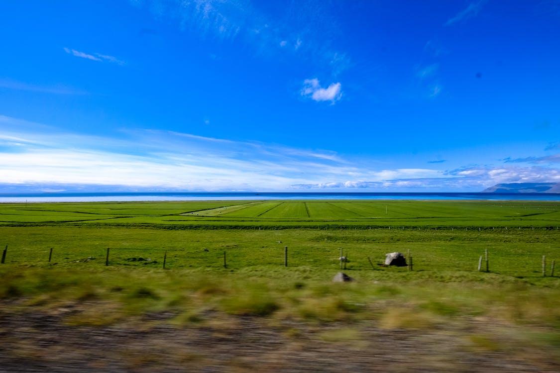 åkermark, bete, bondgård