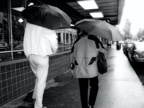 Foto profissional grátis de pessoas guarda-chuvas