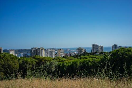 Free stock photo of lisboa, park