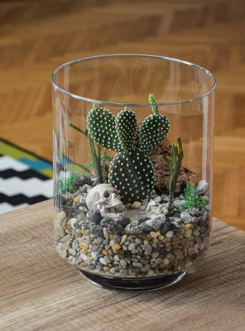 Clear Glass Cup With Stones