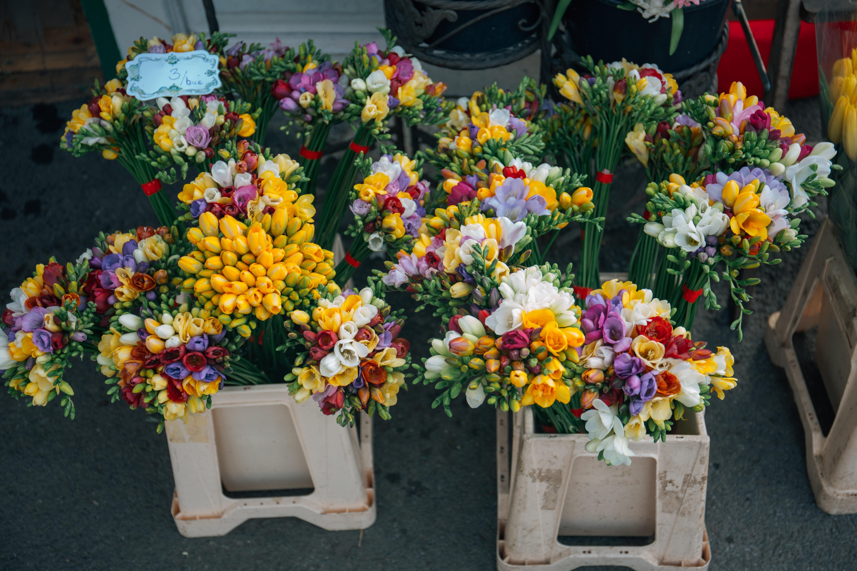 Free stock photo of arrangement bouquet of flowers bouquets free download izmirmasajfo Gallery