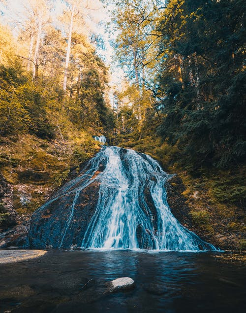 Free stock photo of forest, landscape, water, waterfall