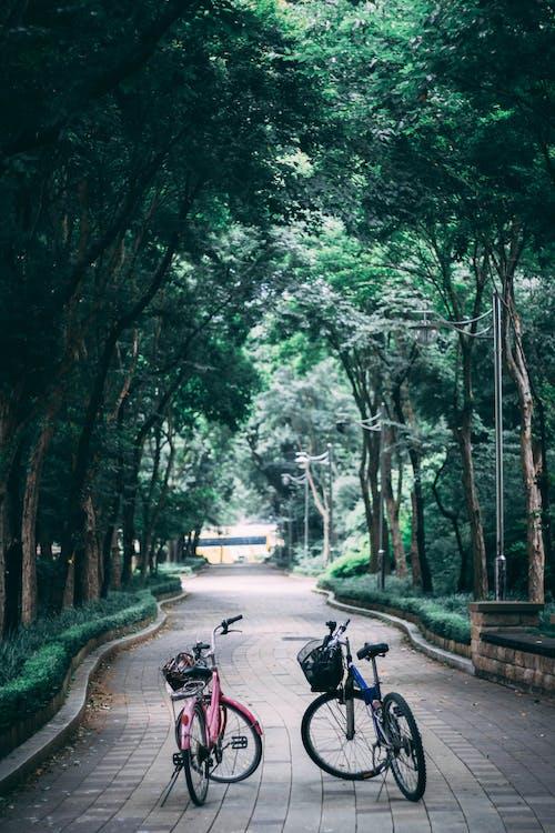 Безкоштовне стокове фото на тему «бруківка, велопарковка, велосипеди»
