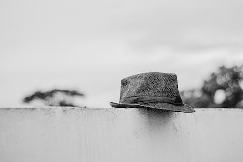 Foto profissional grátis de branco e preto, chapéu fedora, escala de cinza