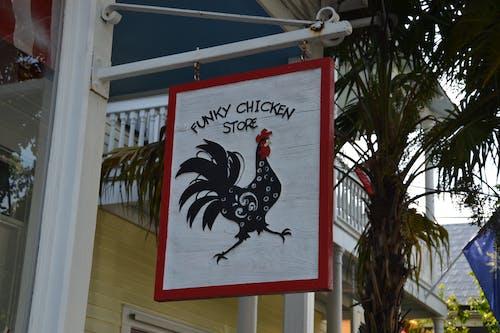Kostnadsfri bild av kyckling, Lagra, skylt, vägskylt
