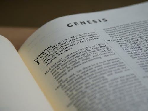 Foto d'estoc gratuïta de antic testament, bíblia, capítol