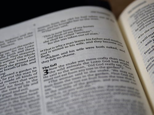 Kostenloses Stock Foto zu altes testament, bibel, buch, christentum