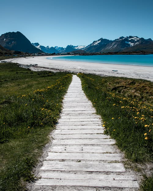 Photo of Pathway Going to the Beach