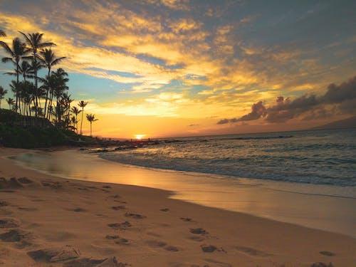 Free stock photo of aloha, beach, beauty in nature, hawaii